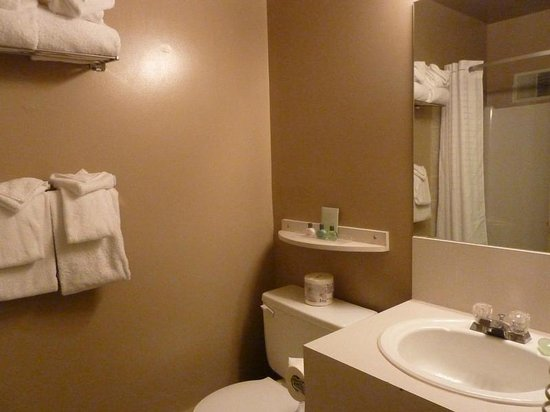 Maligne Lodge: Clean bathroom.