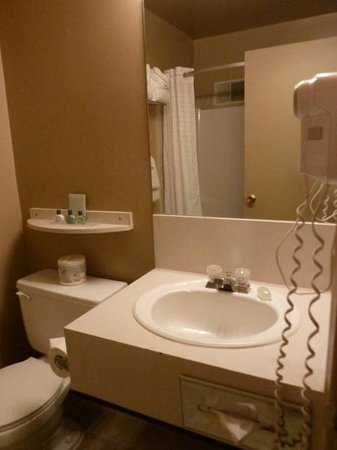 Maligne Lodge: Bathroom with hair dryer and amenities