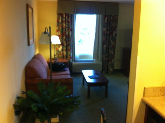 Hampton Inn & Suites Fort Myers - Colonial Blvd : Deluxe suite