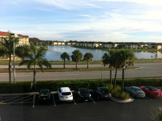 Hampton Inn & Suites Fort Myers - Colonial Blvd : Got to love a palm tree