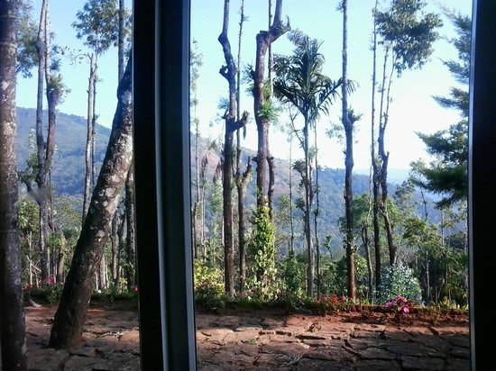 Kaivalyam Retreat: Very Nice Outside Valley From Room