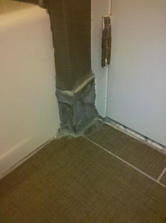 DoubleTree Suites by Hilton Huntsville-South: Behind the bathroom door - cheap cover up