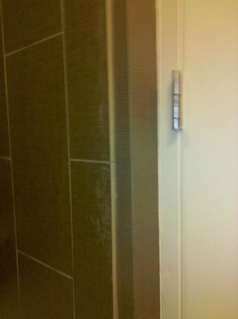 DoubleTree Suites by Hilton Huntsville-South: Dirt behind the shower curtain