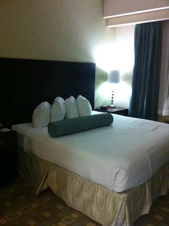 BEST WESTERN PLUS Fort Lauderdale Airport South Inn & Suites: King bed