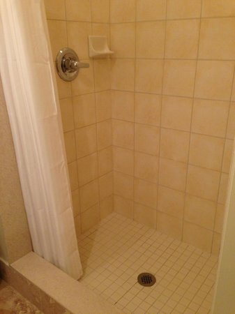 One King West Hotel & Residence: shower