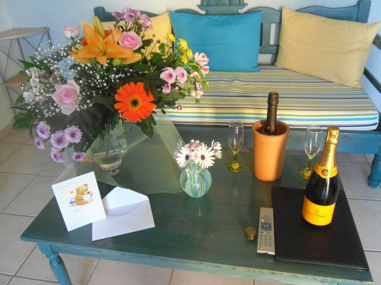 Elounda Heights Apartments and Studios: WHAT A WELCOME!!!!