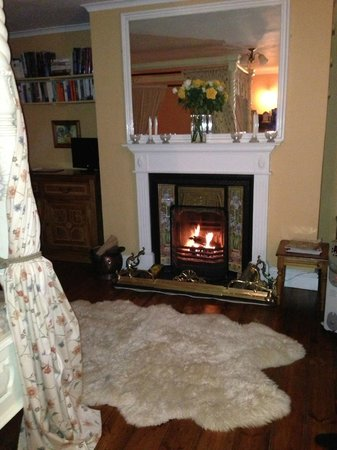 Crondall, UK: working fireplace in bedroom!!
