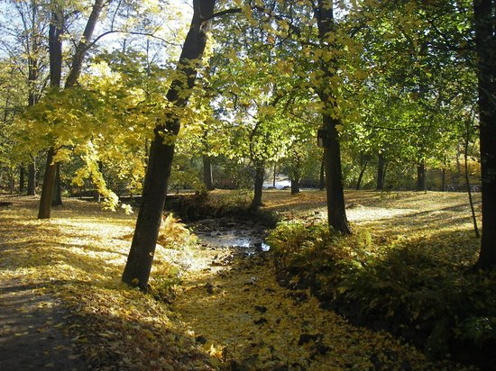 Boulognerskogen City Park