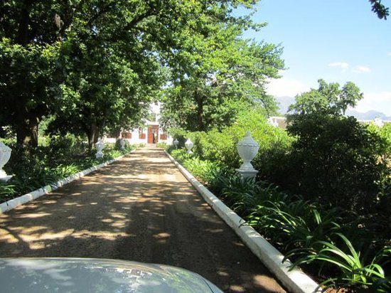 Vrede en Lust Estate: Driveway to Manor house & cottages