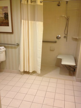 Homewood Suites Miami-Airport / Blue Lagoon: Baño
