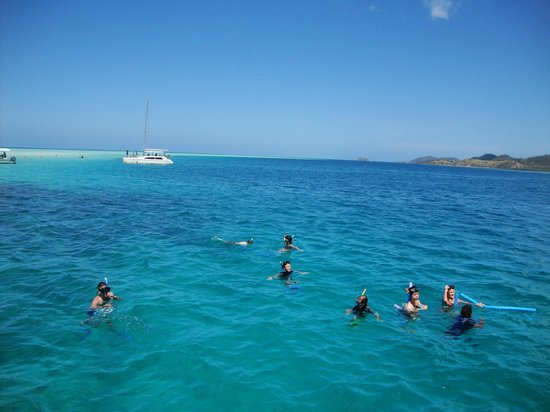 PJ&#39;s Ultimate Sailing &amp; Snorkelling Experience: snorkeling