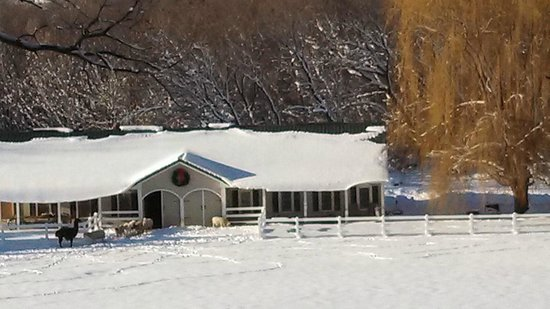 The Speckled Hen Inn: December 25, 2012 - view of the barn