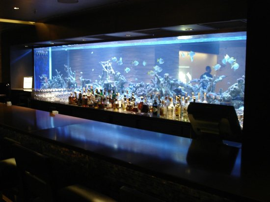 The Istanbul EDITION: Aquarium - Front Desk on one side, hotel bar on the other