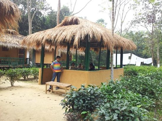 Nature-Hunt Eco Camp Kaziranga: An open air dining area