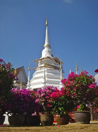 Wat Pan Tao: Nice Chedi behind the Temple