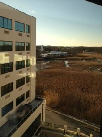 Sheraton Wilmington South: View from room