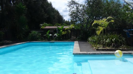 Kerikeri Farm Hostel: swimming pool