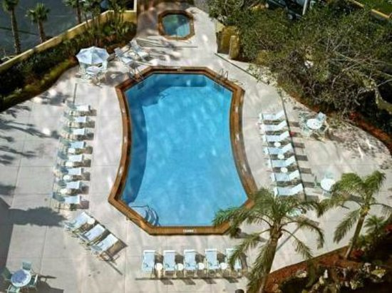 DoubleTree by Hilton & Miami Airport Convention Center: Pool
