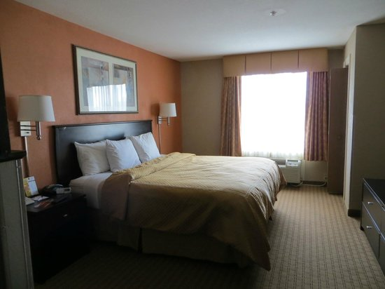 Comfort Suites Panama City Beach: King Suite room