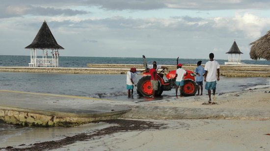 Sandals Montego Bay: Funny moment with staff trying to fix stuck tractor