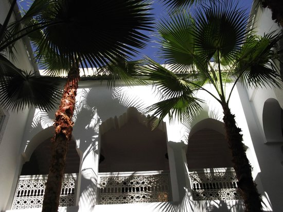 Riad Vert Marrakech: view of palm trees in riad