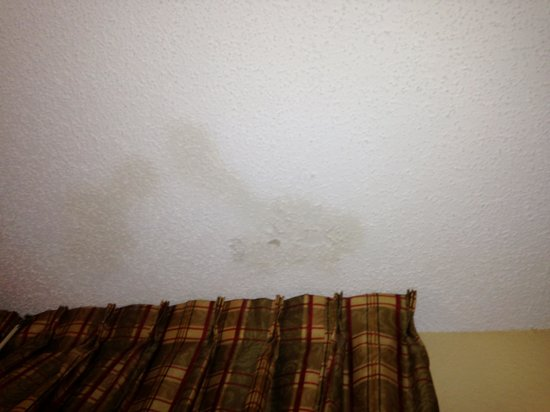 Homestead Studio Suites - Miami - Airport - Doral: stains all over the celing