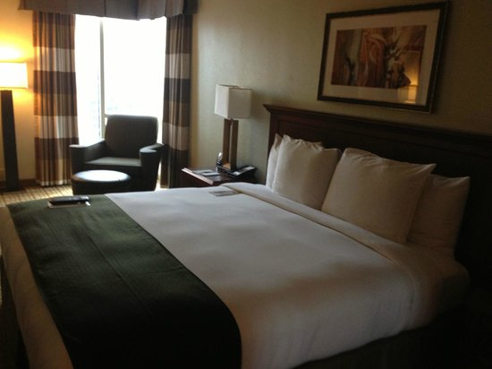 Doubletree Hotel Bethesda: view of the room