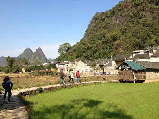 Secret Garden Boutique Hotel: The path across the paddyfields with the village and hotel in the background.