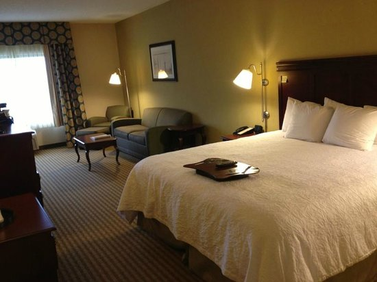 Hampton Inn Palm Beach Gardens: Large room with king-size bed and sofa and chair