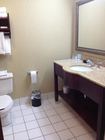 Hampton Inn Palm Beach Gardens: Bathroom vanity