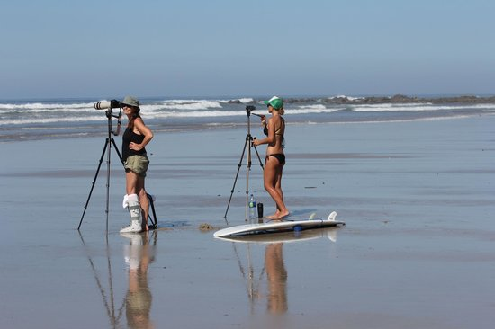 Montezuma, Costa Rica: Video and still photography ensure that you will get your best shot on the surf board and learn
