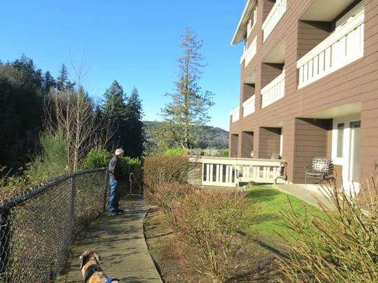 Salish Lodge & Spa: Scenic walk way makes it easy to take dogs for strolls.