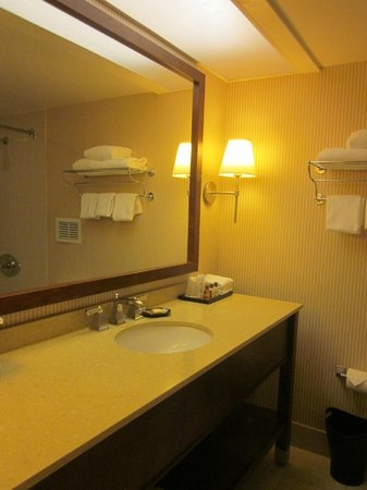 Sheraton Edison Hotel Raritan Center: Washroom
