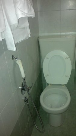 Eden Hotel: bidet...