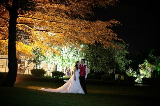 Birchwood Hotel: Outside the evening with their beautiful lights