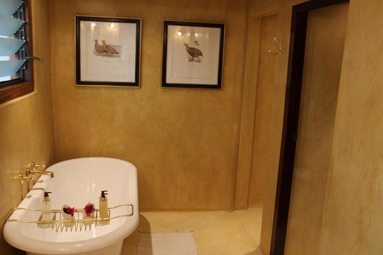 Chobe Game Lodge: bathroom