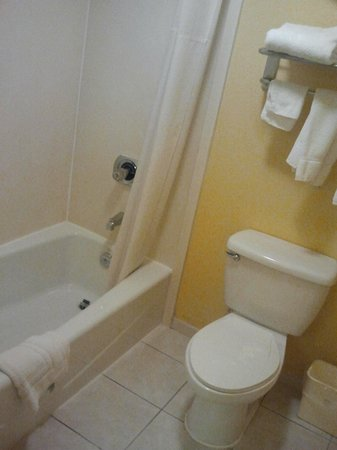 BEST WESTERN PLUS Fort Myers Inn & Suites: Bathroom