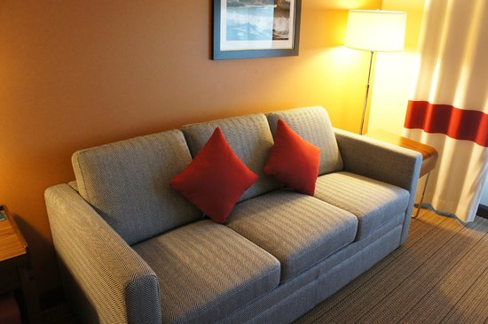 Four Points By Sheraton San Francisco Airport: Sofa