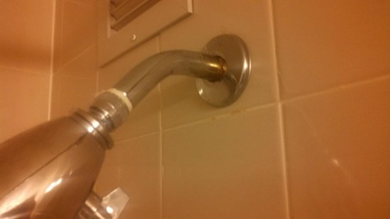 Hyatt Regency Reston: SHOWER HEAD