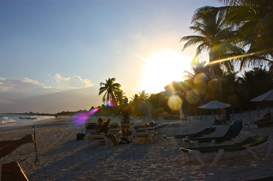 Cabanas Paraiso: View down the beach at sunset.