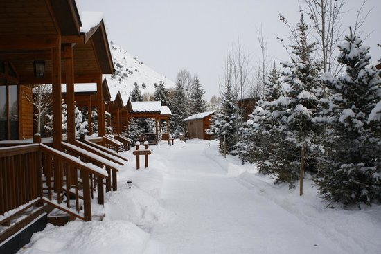 Rustic Inn Creekside Resort and Spa at Jackson Hole: resort scene