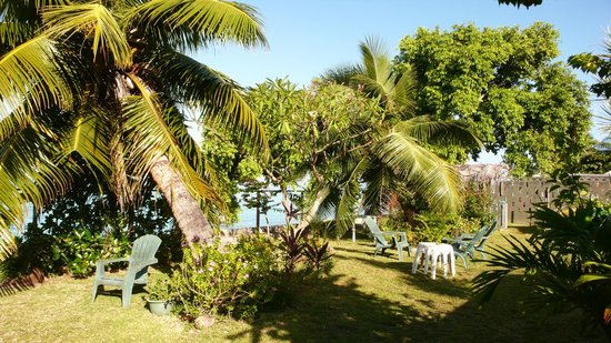 Otaha Lodge: The garden