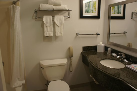 Four Points By Sheraton San Francisco Airport: Bathroom