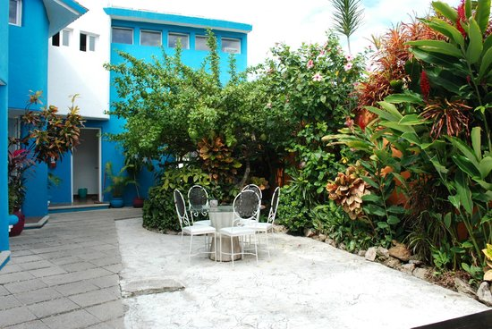 Villas Las Anclas: Courtyard