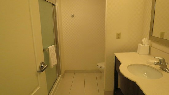 Hampton Inn &amp; Suites by Hilton Halifax - Dartmouth: bathroom