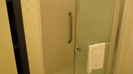 Hampton Inn &amp; Suites by Hilton Halifax - Dartmouth: Walk in shower