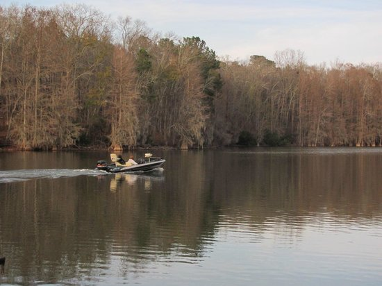 Wyndham santee from dock to units picture of wyndham for Lake marion fishing report