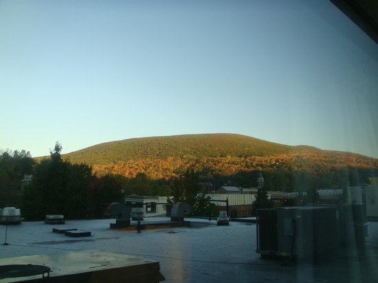 Holiday Inn Berkshires: View of Vermont hillside (and roof of restaurant) from room
