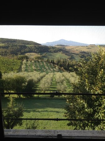 Terre di Nano: View from Quercialsale bedroom window