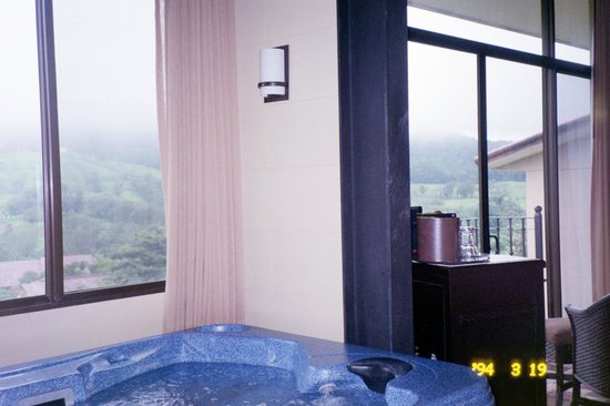 Arenal Kioro: View from the jacuzzi in our suite #604